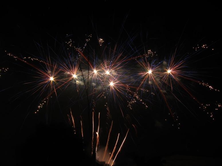 The best firework photo I got from 2013 NYE.