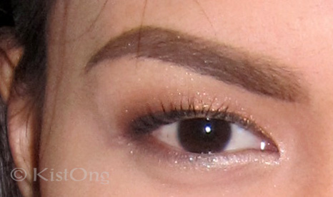 19sample-anastasia-brow