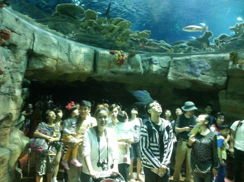 9ocean-park-hong-kong-people